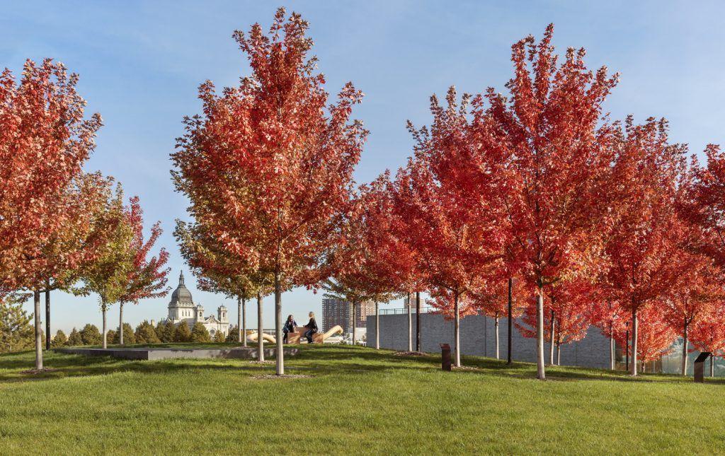 Walker Art Center Wurtele Upper Garden Wins National