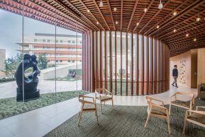 Lucile Packard Children's Hospital Stanford Wins Healthcare Design